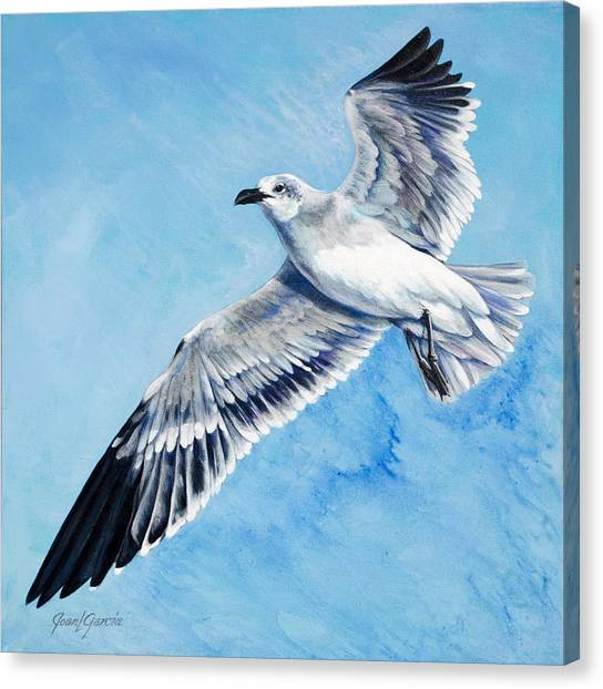 Flying Gull Canvas Print