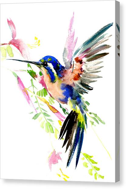 Flying Hummingbird Ltramarine Blue Peach Colors Canvas Print