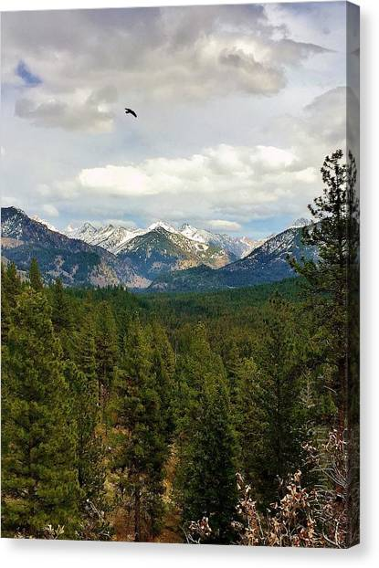 Boise National Forest Canvas Print - Flying Over The Mountains by Sandra M
