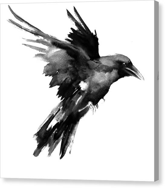 Ravens Canvas Print - Flying Raven by Suren Nersisyan