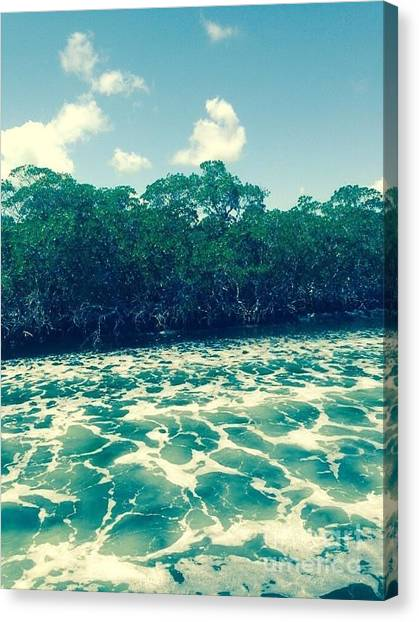 Foamy Water Canvas Print