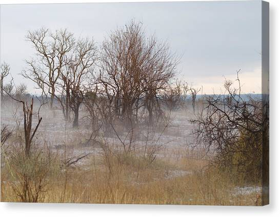 Hailstorms Canvas Print - Fog At Kruger Park by Davide Guidolin