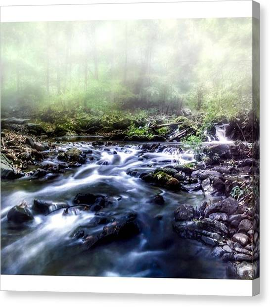 Foggy Forests Canvas Print - Fog Dissipates Over The Stream As The by Blake Butler
