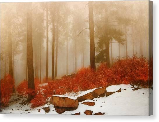 Fog II Canvas Print