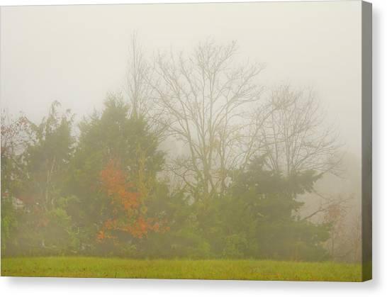 Fog In Autumn Canvas Print