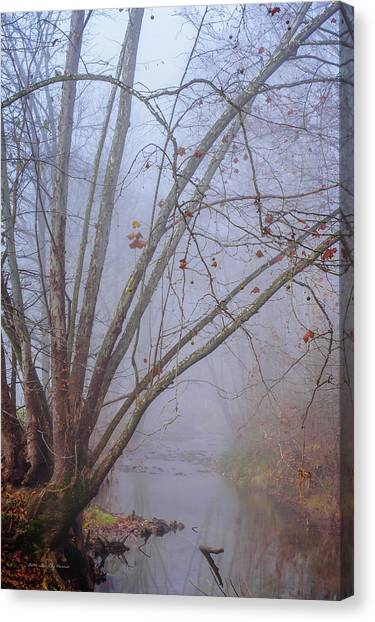 Fog On Buffalo Creek 1 Canvas Print
