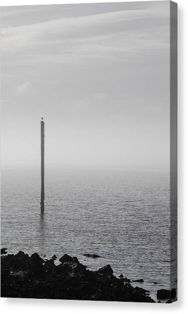 Canvas Print featuring the photograph Fog On The Cape Fear River On Christmas Day 2015 by Willard Killough III