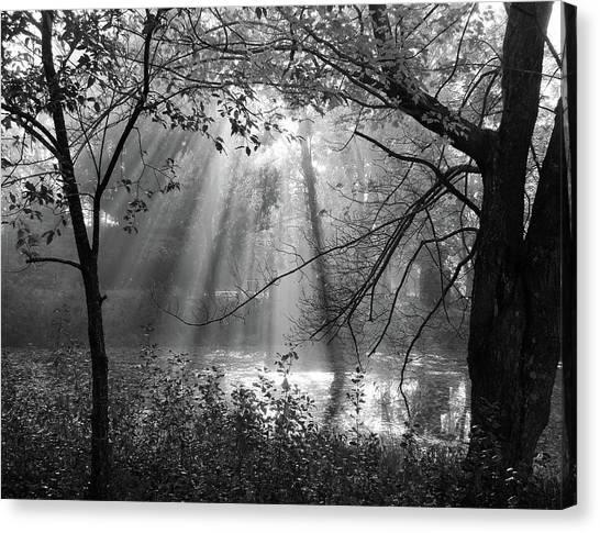 Fog Rays Canvas Print