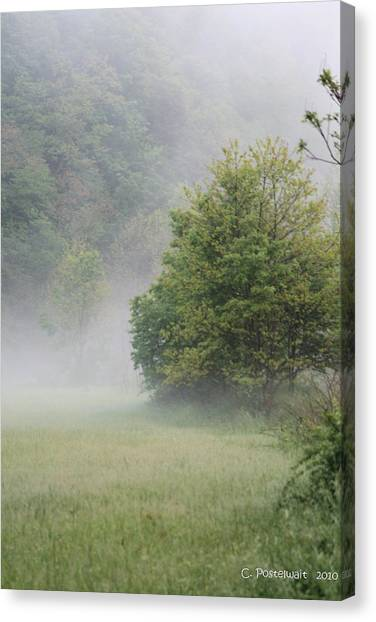 Fog Rising Canvas Print