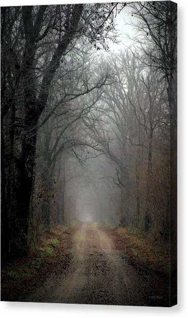 Fog Shrouded Lane  7861 Dp_2 Canvas Print