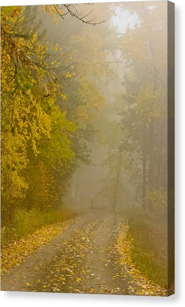 Foggy Autumn Morn Canvas Print