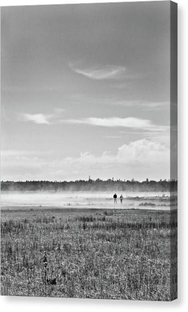 Foggy Day On A Marsh Canvas Print