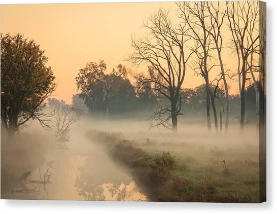 Foggy Fall Morning On Gary Avenue Canvas Print