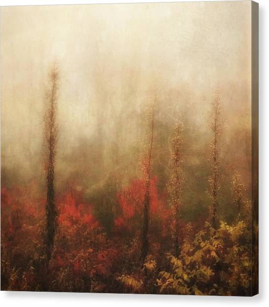 Foggy Fall On The Parkway Canvas Print