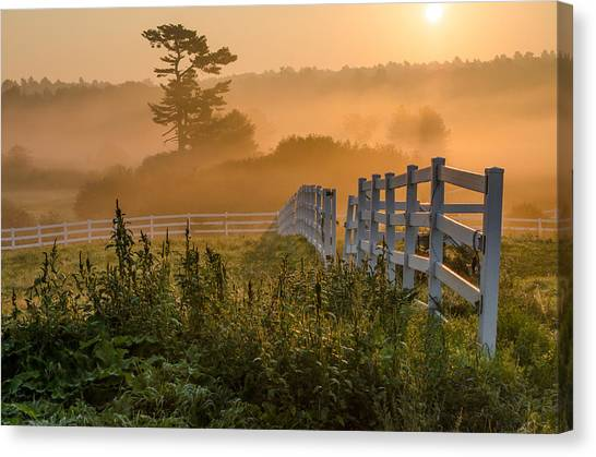 Foggy Fence Canvas Print
