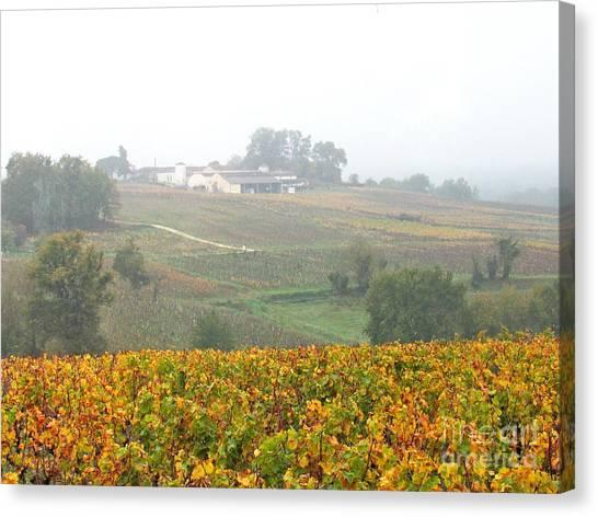 Foggy French Vineyard Canvas Print