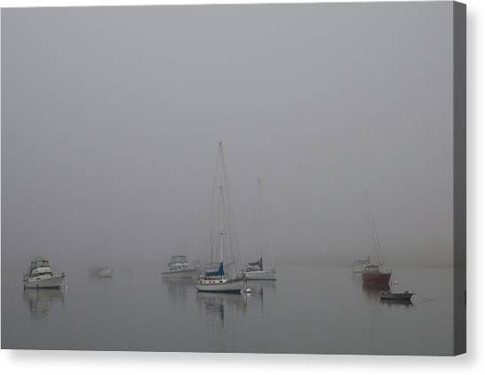 Waiting Out The Fog Canvas Print