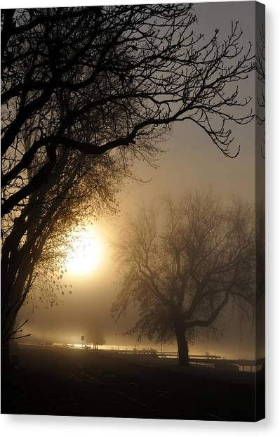 Foggy Morn Canvas Print