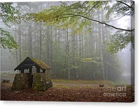 Foggy Morning At Droop Mountain Canvas Print