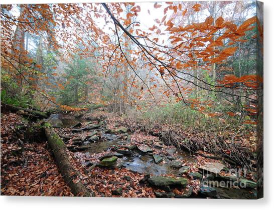Ohio Valley Canvas Print - Foggy Morning by Doug Marcum