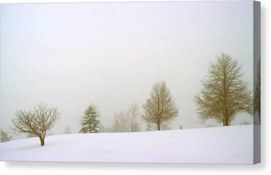 Foggy Morning Landscape 15 Canvas Print by Steve Ohlsen