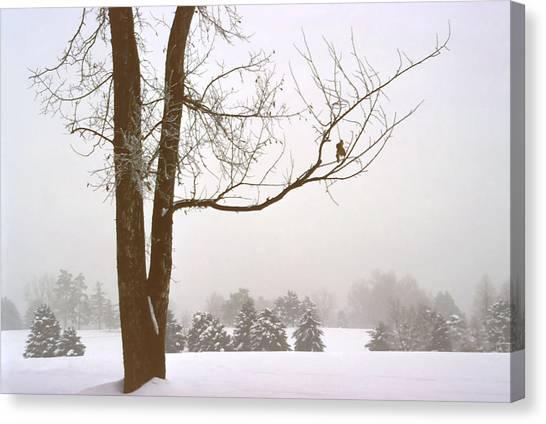 Foggy Morning Landscape 16 Canvas Print by Steve Ohlsen