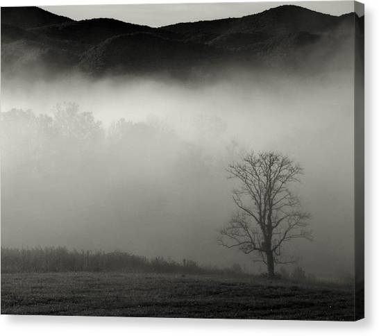 Foggy Mountain-tennessee Canvas Print