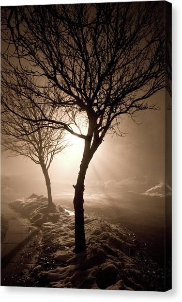 Foggy Night Canvas Print by Elizabeth Richardson