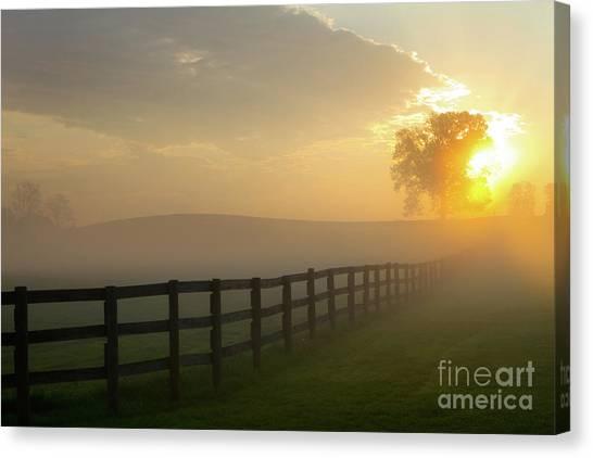 Foggy Pasture Sunrise Canvas Print