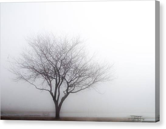 Foggy Picnic Canvas Print