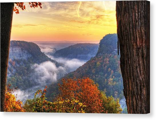 Foggy Sunrise Over Letchworth State Park In New York Canvas Print