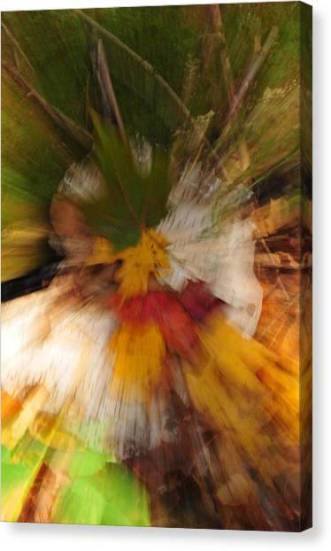 Foliage Zoom Canvas Print by Nancy Marshall