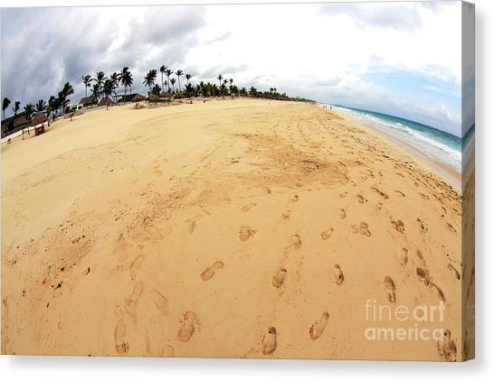 Footprints In The Sand Canvas Prints   Fine Art America