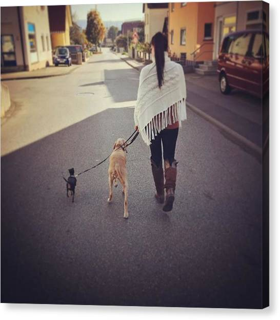 Binders Canvas Print - #followme #dogs #walk #woman #city by Alex Binder