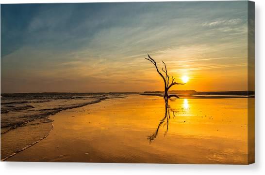 Folly Beach Skeleton Tree At Sunset - Folly Beach Sc Canvas Print