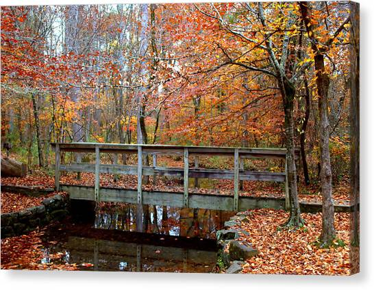 Foot Bridge Canvas Print