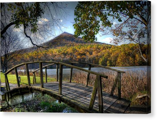 Otters Canvas Print - Foot Bridge by Todd Hostetter