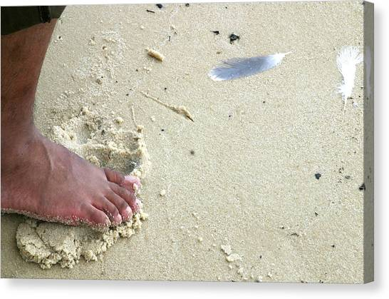 Foot  On  Beach -  Image  2 -  Cropped  Version Canvas Print