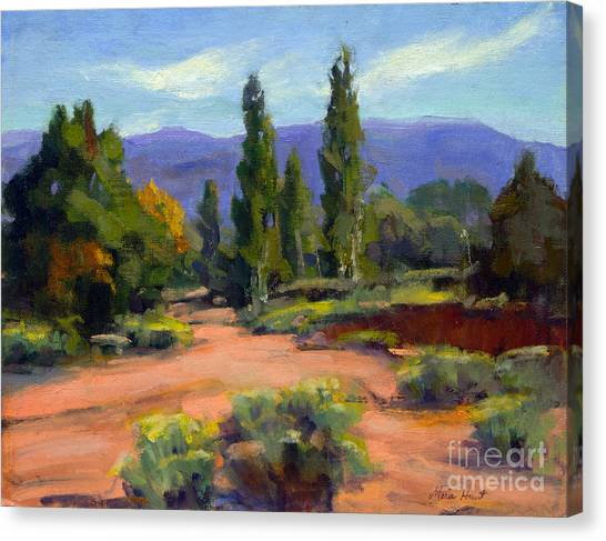Sonoran Desert Canvas Print - Ancient But Beautiful by Maria Hunt