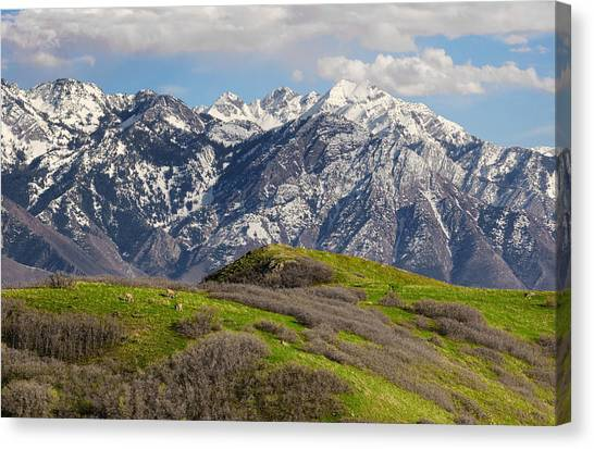 Foothills Above Salt Lake City Canvas Print