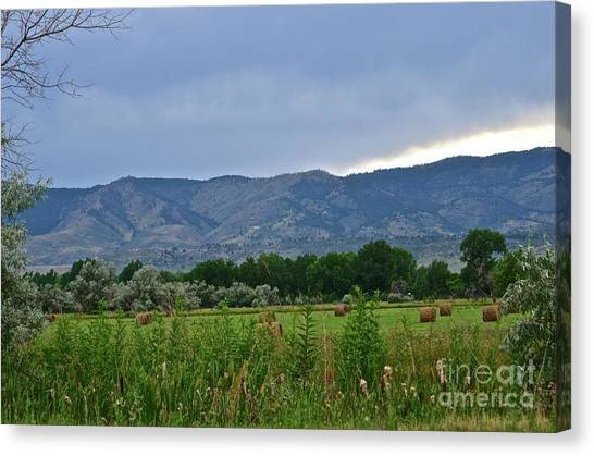 Foothills Of Fort Collins Canvas Print