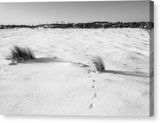 Footprints In The Snow I Canvas Print