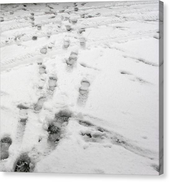 Footprints In The Snow Canvas Print by Janis Beauchamp