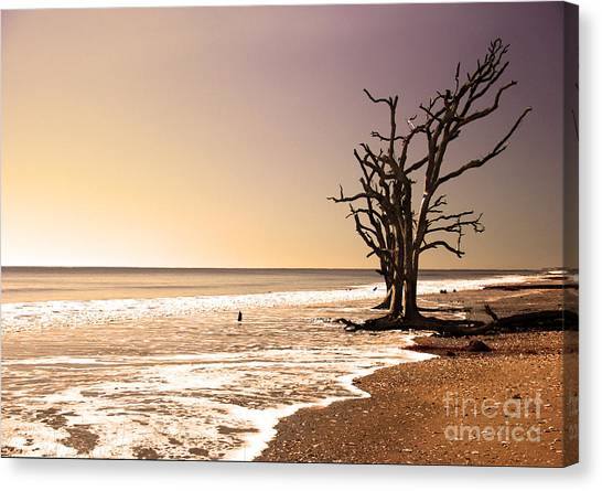 For Just One Day Canvas Print
