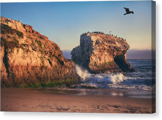 Ca Canvas Print - For The Rest Of My Days by Laurie Search