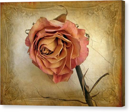 Flower Canvas Print - For You by Jessica Jenney