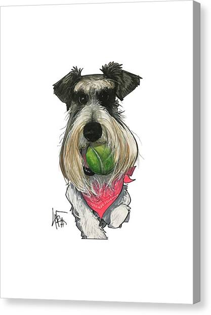 Schnauzers Canvas Print - Ford 3235 Miley by John LaFree
