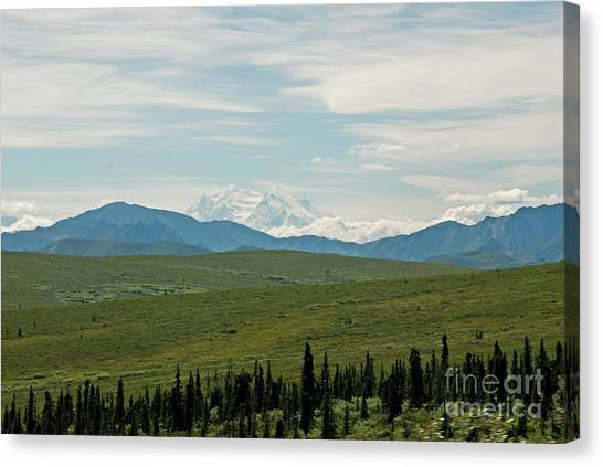 Foreground And Mountain Canvas Print