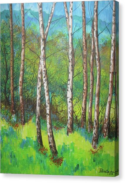 Forest 1 Canvas Print