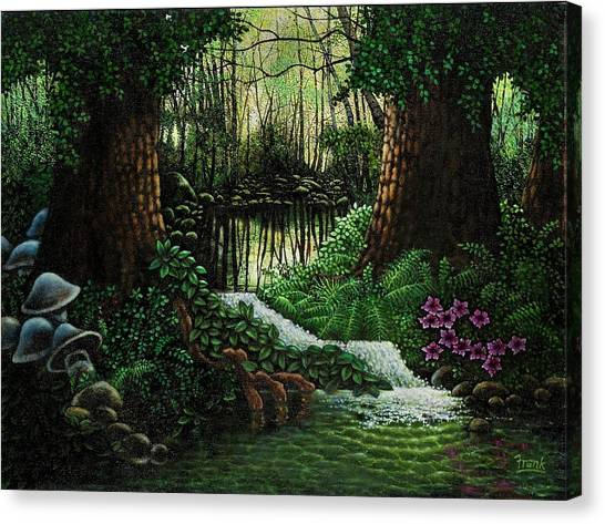 Forest Brook Canvas Print